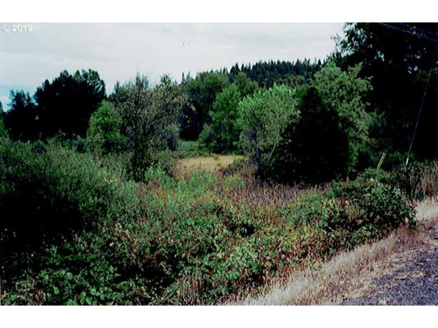 0 Hwy 62, Eagle Point, OR 97524 (MLS #19350204) :: Song Real Estate
