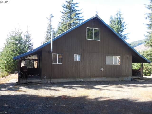 Lot 12 Wilderness Dr, Cougar, WA 98616 (MLS #19355187) :: Next Home Realty Connection