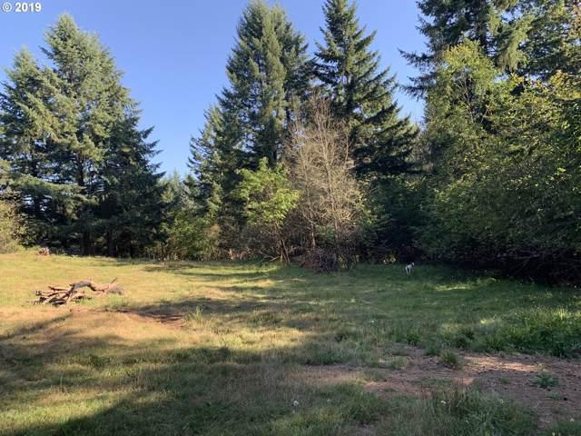 0 Ne 151th St, Brush Prairie, WA 98606 (MLS #19355356) :: Next Home Realty Connection