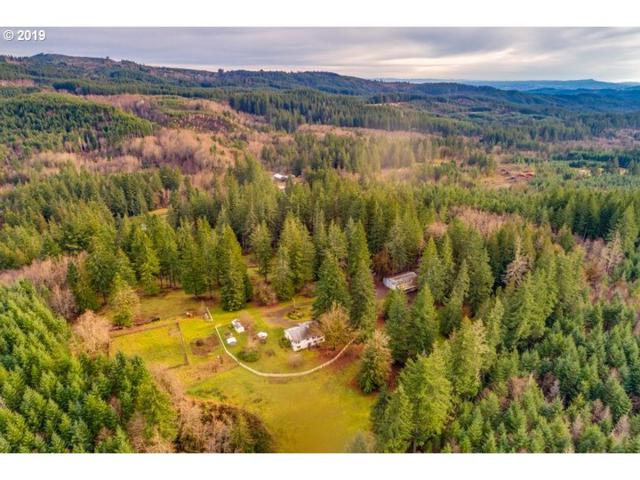 32149 NW Highway 47, Buxton, OR 97109 (MLS #19356551) :: Premiere Property Group LLC