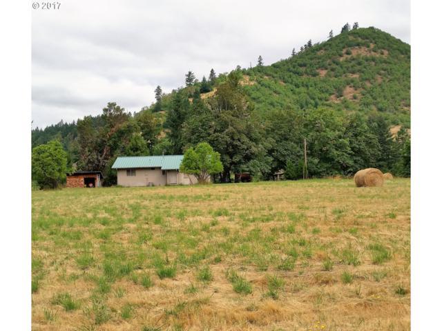 3925 Ferguson Ln, Days Creek, OR 97429 (MLS #19360494) :: Townsend Jarvis Group Real Estate