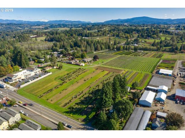 6110 SE Lusted Rd, Gresham, OR 97080 (MLS #19365864) :: Next Home Realty Connection