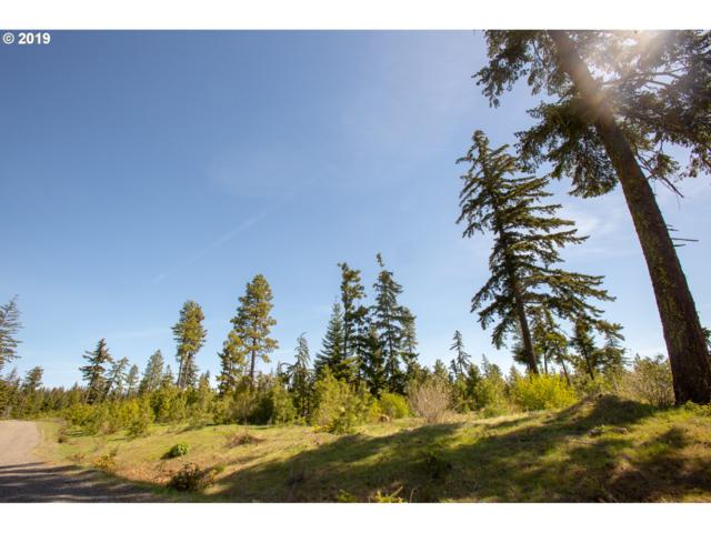 Titan Dr #4, Lyle, WA 98635 (MLS #19372455) :: McKillion Real Estate Group