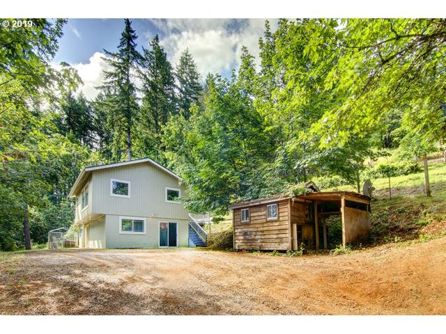 38956 Place Rd, Fall Creek, OR 97438 (MLS #19389576) :: Team Zebrowski