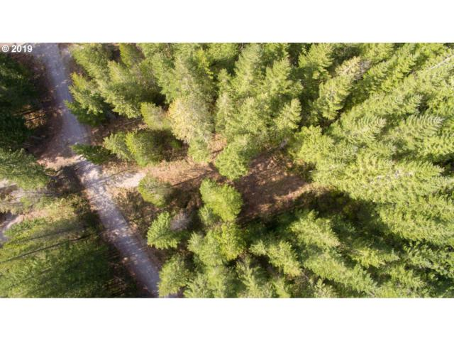 Lahar Ln #6, Cougar, WA 98616 (MLS #19399845) :: TK Real Estate Group