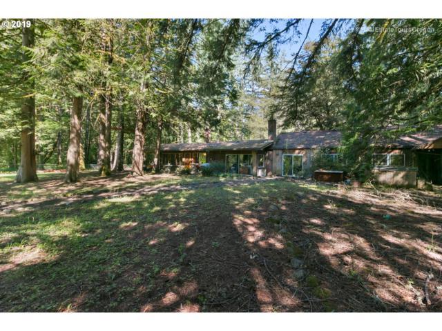 58220 E Marmot Rd, Sandy, OR 97055 (MLS #19404370) :: Gregory Home Team | Keller Williams Realty Mid-Willamette