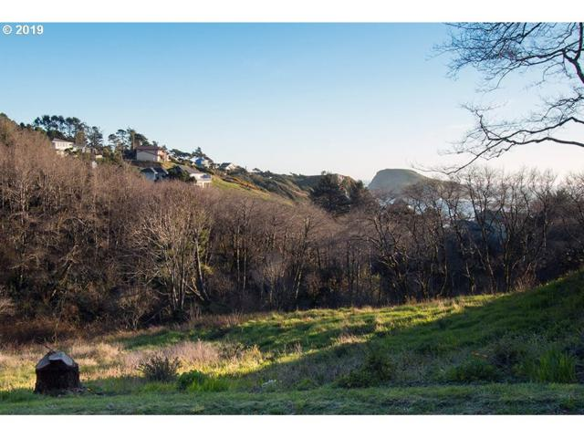 17380 Park Spur, Brookings, OR 97415 (MLS #19409444) :: Brantley Christianson Real Estate