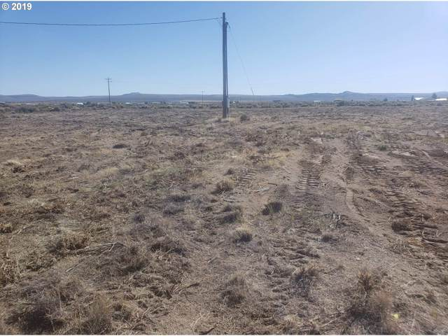 Crack in The Ground, Christmas Valley, OR 97641 (MLS #19410812) :: Change Realty