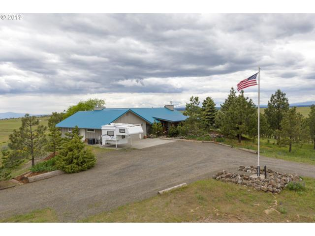219 Schilling Rd, Lyle, WA 98635 (MLS #19412645) :: Change Realty