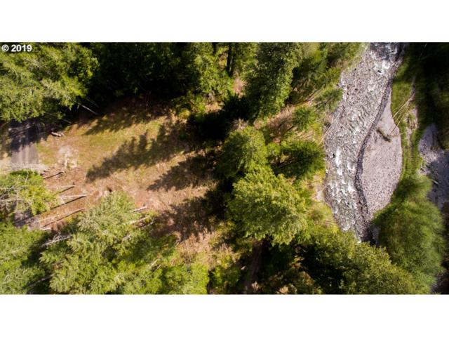 Lodgepole Ln, Cougar, WA 98616 (MLS #19414033) :: Townsend Jarvis Group Real Estate