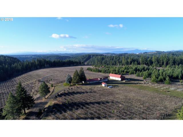 90 Acme Rd, White Salmon, WA 98672 (MLS #19427540) :: Change Realty