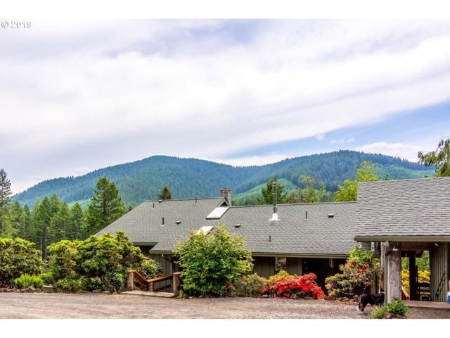 47555 Mckenzie Hwy, Vida, OR 97488 (MLS #19428003) :: The Galand Haas Real Estate Team