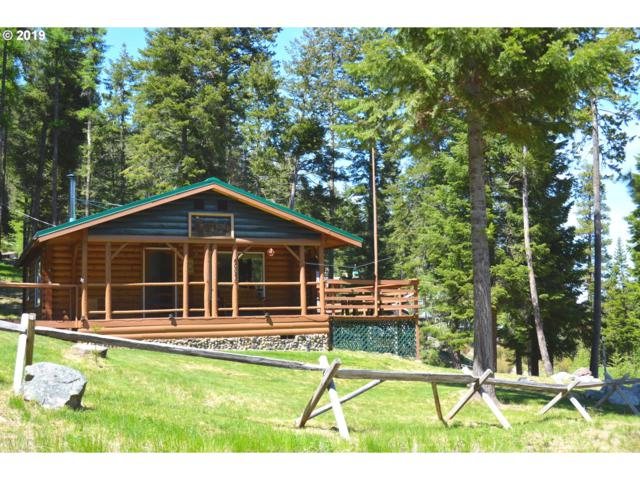 62074 Chipmunk Ln, Joseph, OR 97846 (MLS #19428096) :: Townsend Jarvis Group Real Estate