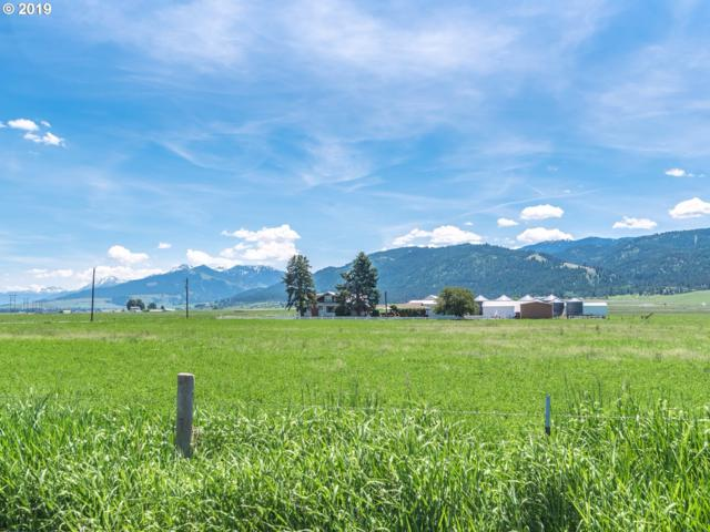 69694 Allen Canyon Loop, Wallowa, OR 97885 (MLS #19433357) :: Townsend Jarvis Group Real Estate