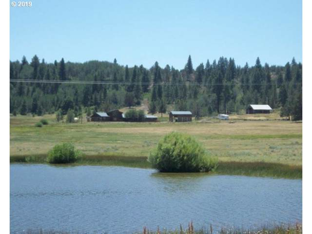88900 Drews Gap Lane, Lakeview, OR 97630 (MLS #19442733) :: Change Realty