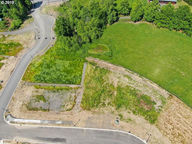 4343 NW Paddock Ln, Camas, WA 98607 (MLS #19446760) :: Cano Real Estate