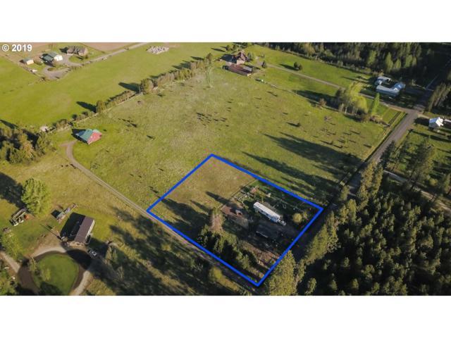Mt. Adams Hwy, Glenwood , WA 98619 (MLS #19452764) :: Matin Real Estate Group