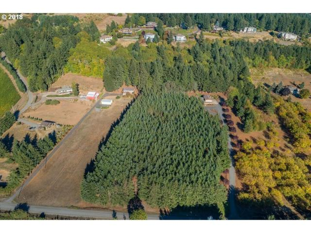 NE Anna Dr, Newberg, OR 97132 (MLS #19463755) :: Townsend Jarvis Group Real Estate