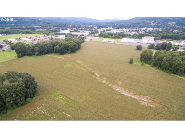 345 N Pekin Rd, Woodland, WA 98674 (MLS #19471694) :: R&R Properties of Eugene LLC