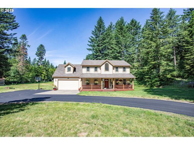 621 Woodard Creek Rd, Skamania, WA 98605 (MLS #19478583) :: Premiere Property Group LLC