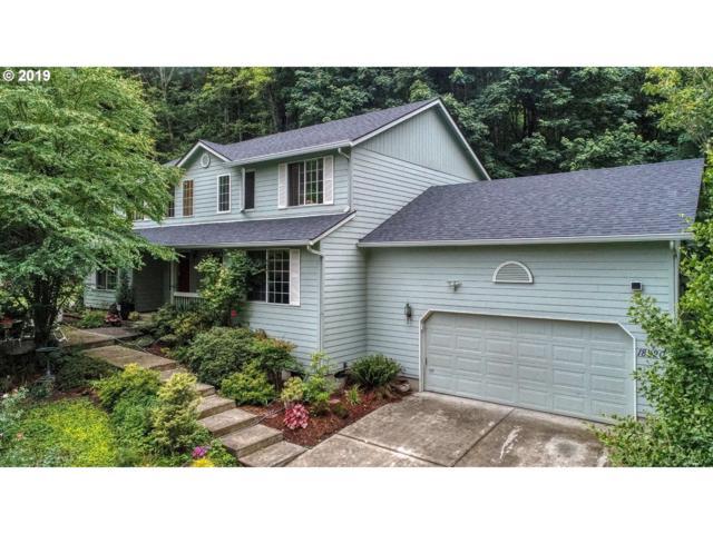 18820 NE Sunrise Ln, Yacolt, WA 98675 (MLS #19494394) :: Song Real Estate