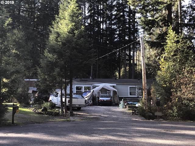 1151 Hopeful Valley Ln, Maple Falls, WA, WA 98266 (MLS #19495809) :: Townsend Jarvis Group Real Estate