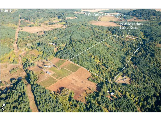 0 Nw Meadow Lake Road, Carlton, OR 97111 (MLS #19501222) :: TK Real Estate Group