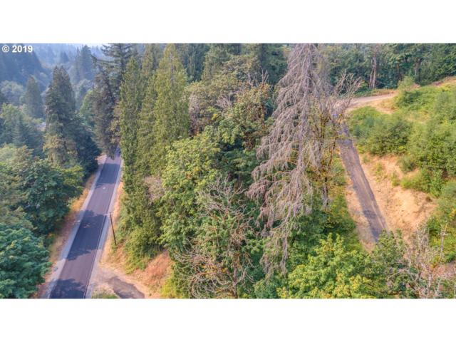3232 Canyon Creek Block 1 Rd Lot 5, Washougal, WA 98671 (MLS #19505489) :: The Lynne Gately Team