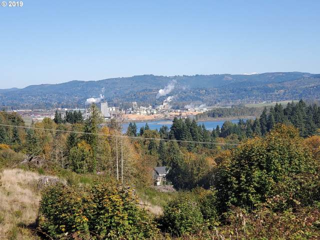 Debast, Rainier, OR 97048 (MLS #19507647) :: Next Home Realty Connection