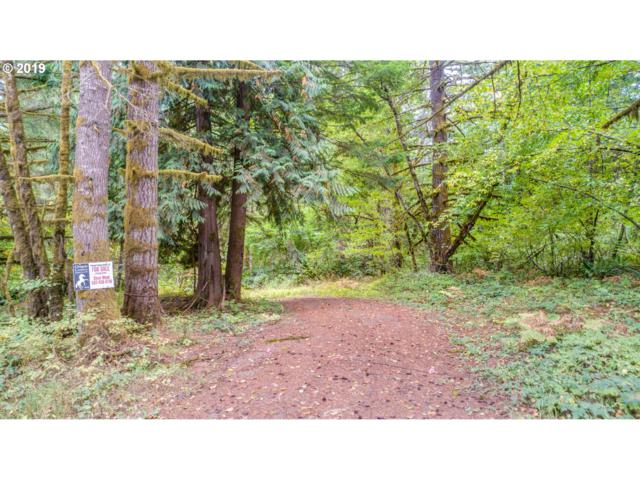56580 NW Strassel Rd, Forest Grove, OR 97116 (MLS #19509343) :: McKillion Real Estate Group