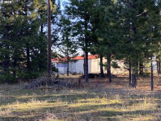 4 Borcea Ln, Lyle, WA 98635 (MLS #19512305) :: Change Realty