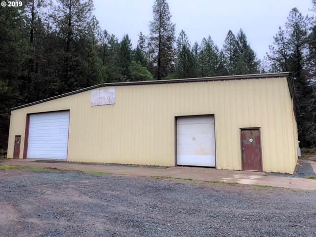 142 Lower Wolf Creek Rd, Wolf Creek, OR 97497 (MLS #19514322) :: Premiere Property Group LLC