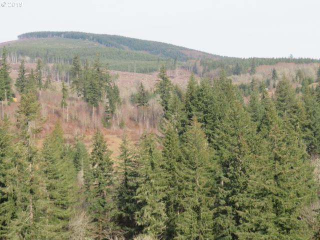 S Goble Creek Rd, Kelso, WA 98626 (MLS #19516427) :: R&R Properties of Eugene LLC