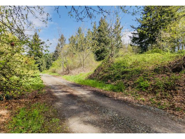 85373 Winding Way, Pleasant Hill, OR 97455 (MLS #19517283) :: R&R Properties of Eugene LLC