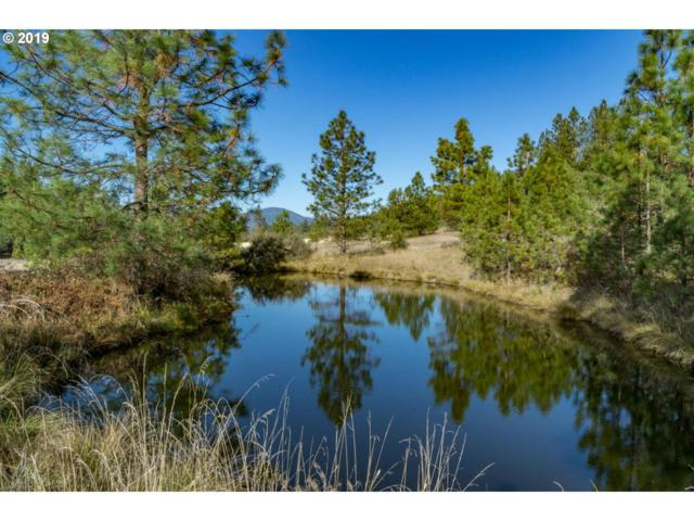 0 Caves Hwy, Cave Junction, OR 97523 (MLS #19518011) :: Fox Real Estate Group