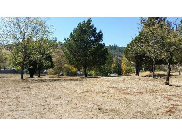260 Kester Rd, Roseburg, OR 97470 (MLS #19519509) :: McKillion Real Estate Group