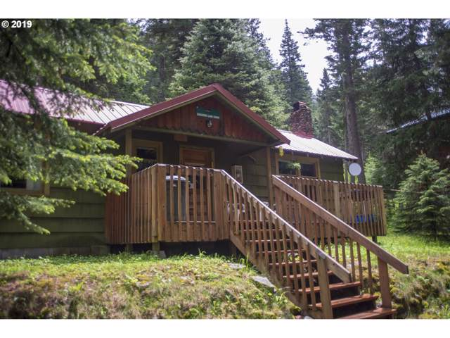 84969 Nez Perce Rd, Wallowa Lake, OR 97846 (MLS #19521368) :: Fox Real Estate Group