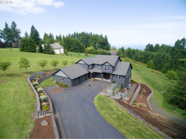 17871 NE Sunrise Peaks Ln, Hillsboro, OR 97123 (MLS #19521909) :: Cano Real Estate