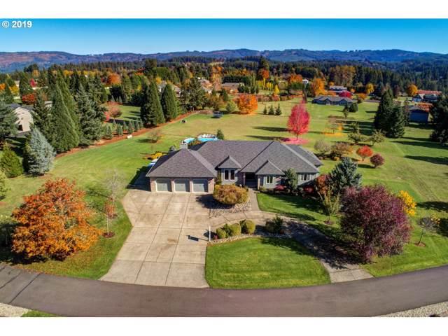 18113 NE 201ST Ct, Brush Prairie, WA 98606 (MLS #19525131) :: Cano Real Estate