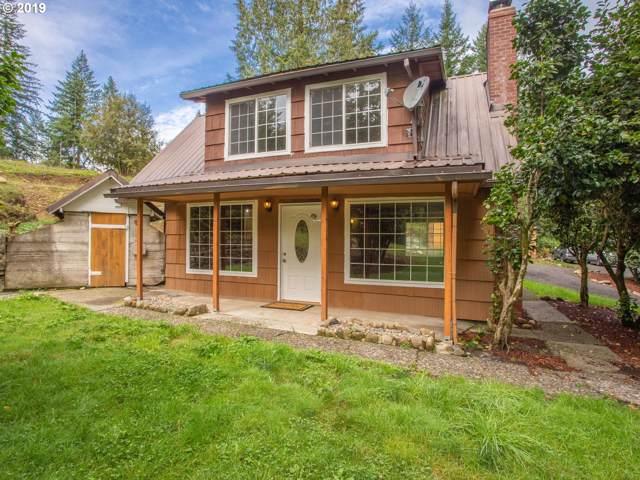 17803 NE Cole Witter Rd, Battle Ground, WA 98604 (MLS #19525913) :: Skoro International Real Estate Group LLC