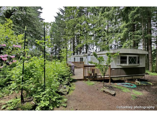 1701 NE Brower Rd, Corbett, OR 97019 (MLS #19526041) :: Matin Real Estate Group