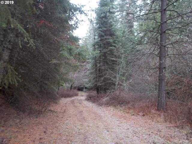 0 Imnaha Way, Imnaha, OR 97842 (MLS #19526176) :: Townsend Jarvis Group Real Estate