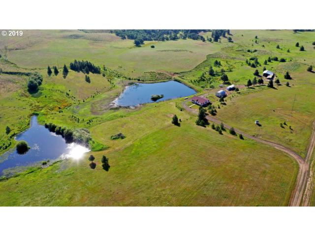 896 High Prairie Rd, Lyle, WA 98635 (MLS #19526286) :: McKillion Real Estate Group