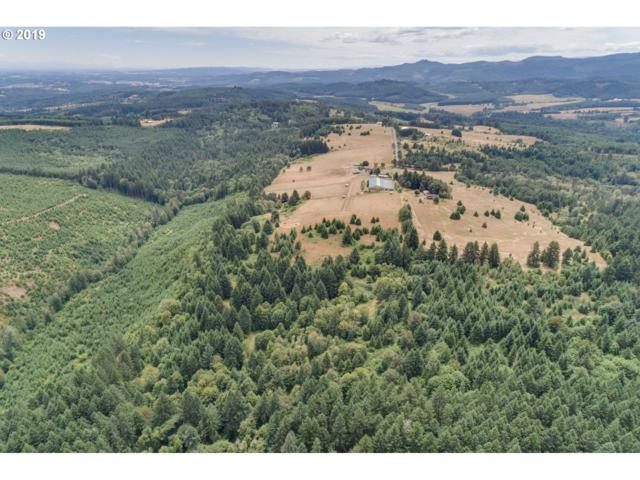 17346 NW Oak Ridge Rd, Yamhill, OR 97148 (MLS #19529525) :: McKillion Real Estate Group