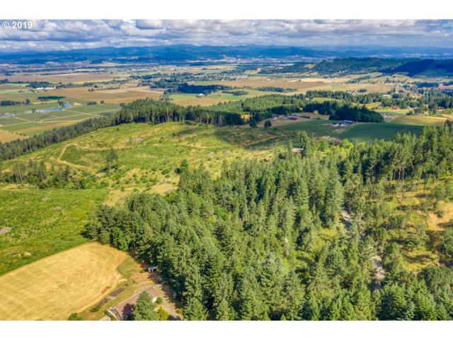 Skyline Rd, Amity, OR 97101 (MLS #19532600) :: TK Real Estate Group