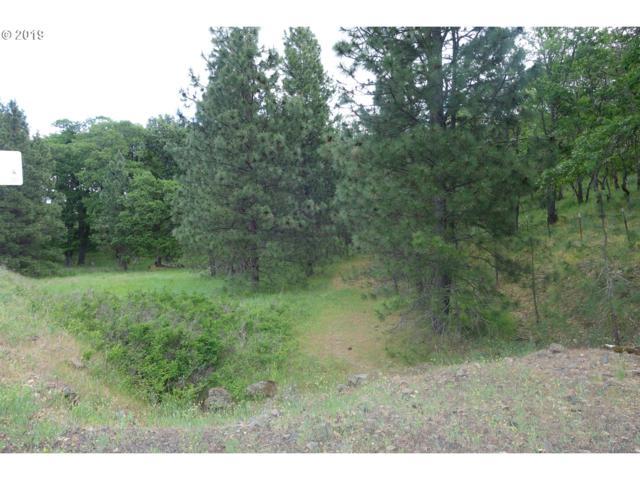 391 Centerville Hwy, Lyle, WA 98635 (MLS #19535036) :: McKillion Real Estate Group