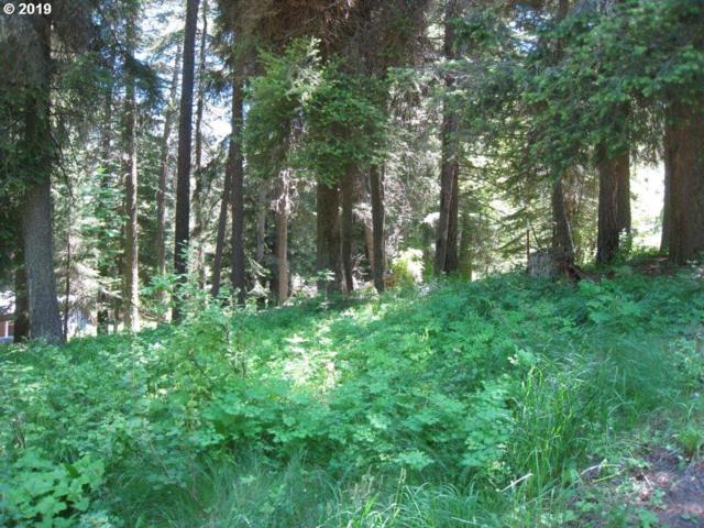 0 Wilderness, Joseph, OR 97846 (MLS #19537285) :: Cano Real Estate