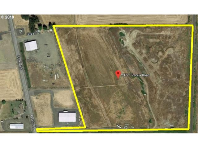 23721 Peoria Rd, Harrisburg, OR 97446 (MLS #19545794) :: The Galand Haas Real Estate Team