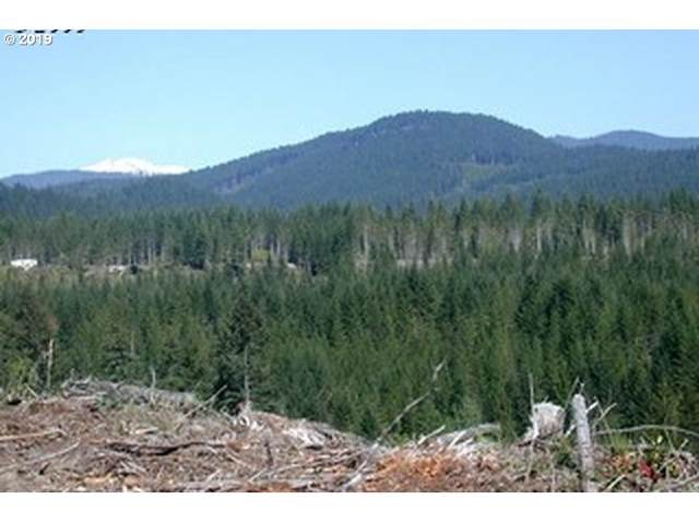 Pine Boulder #4, Cougar, WA 98616 (MLS #19546742) :: Next Home Realty Connection