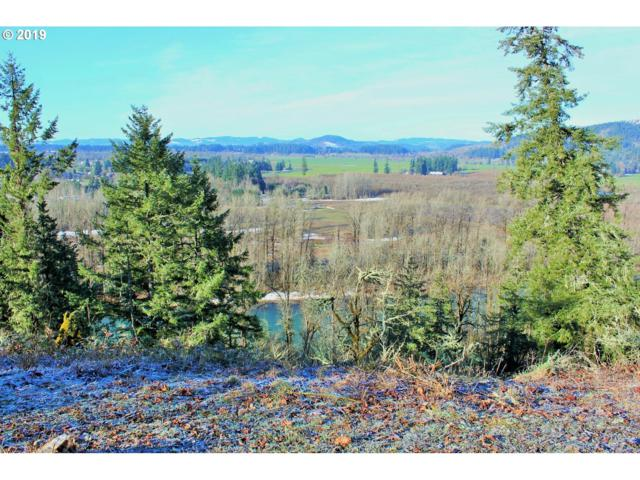 Jasper Rd #4, Pleasant Hill, OR 97455 (MLS #19548373) :: Song Real Estate